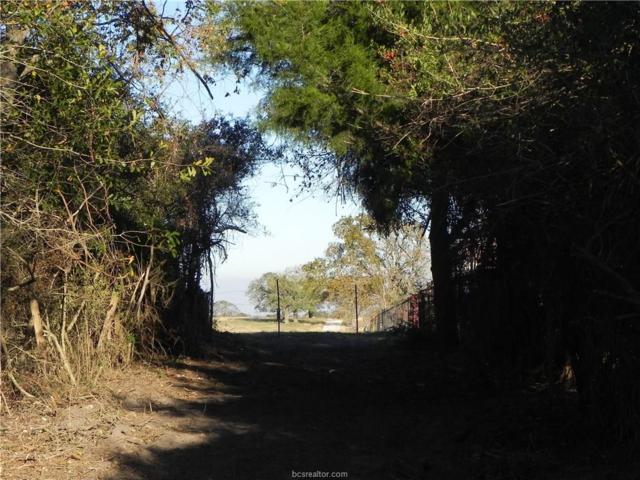TBD Country Road 228, Bedias, TX 77831 (MLS #17018914) :: Cherry Ruffino Realtors