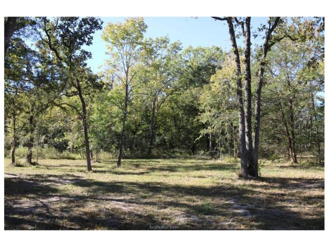 000 Redwood Hollow, Bedias, TX 77831 (MLS #17019023) :: The Tradition Group