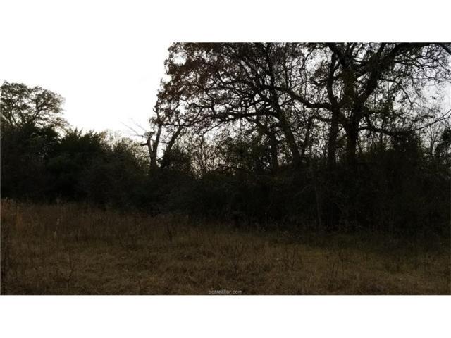 3045 Megan Drive, Bryan, TX 77808 (MLS #17019098) :: Platinum Real Estate Group