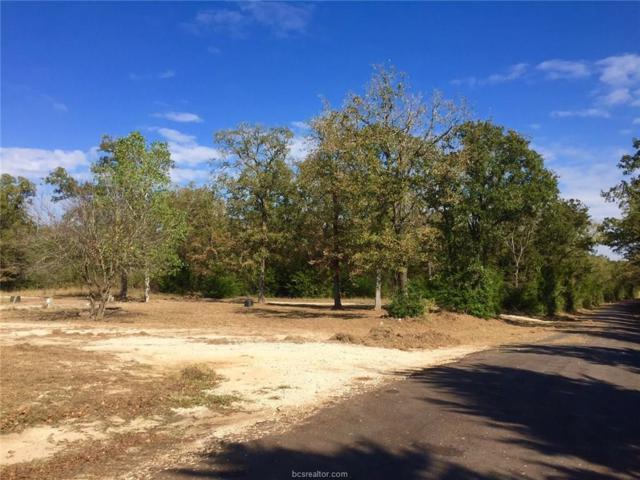 (+/-1acre) TBD Whiterock Road, Bremond, TX 76629 (MLS #17019124) :: Platinum Real Estate Group