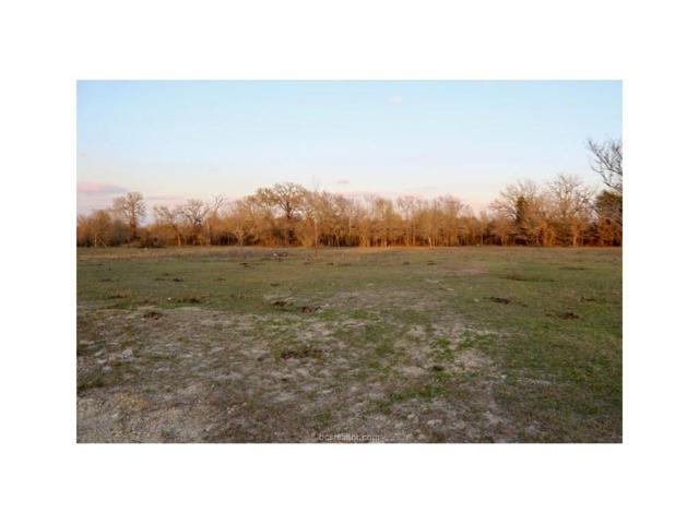 4048 Fm 244 Road, Anderson, TX 77830 (MLS #17019403) :: Cherry Ruffino Realtors