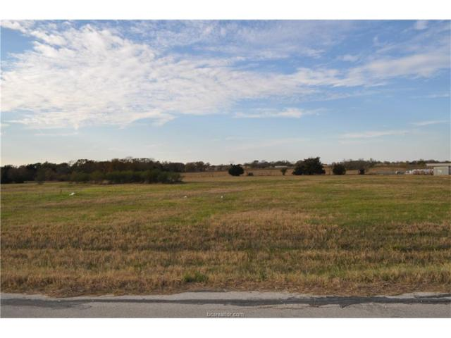 3778 Endeavor Loop, Bryan, TX 77808 (MLS #18000017) :: Cherry Ruffino Team