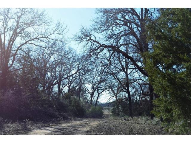 9201 Fm 2096 Farm To Market Road, Franklin, TX 77856 (MLS #18000189) :: Amber Cox