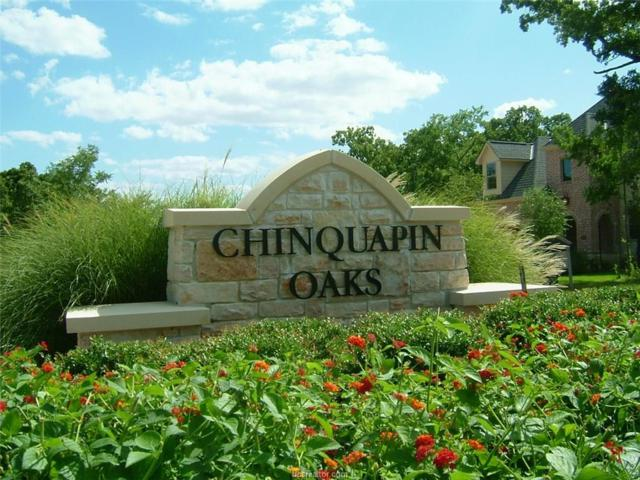 3411 Chinquapin Court, Bryan, TX 77807 (MLS #18000419) :: The Lester Group