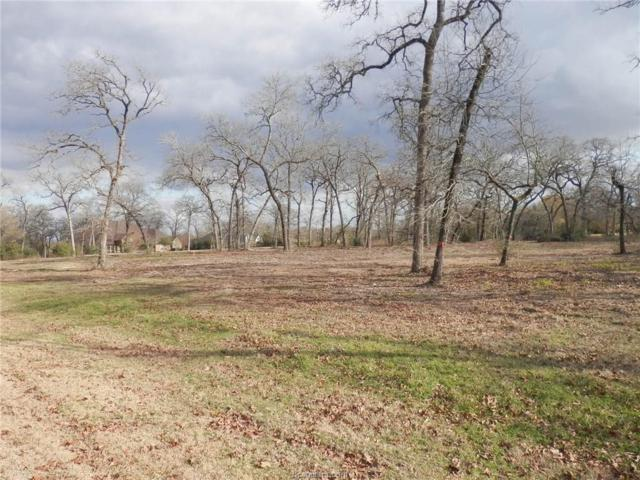Lot 48 Belgrave Square, Iola, TX 77861 (MLS #18000572) :: The Tradition Group
