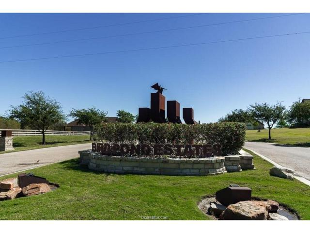 5209 Ruddy Duck Drive, College Station, TX 77845 (MLS #18000748) :: The Lester Group