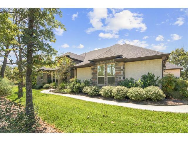 18446 Anasazi Bluff Drive, College Station, TX 77845 (MLS #18002193) :: Platinum Real Estate Group
