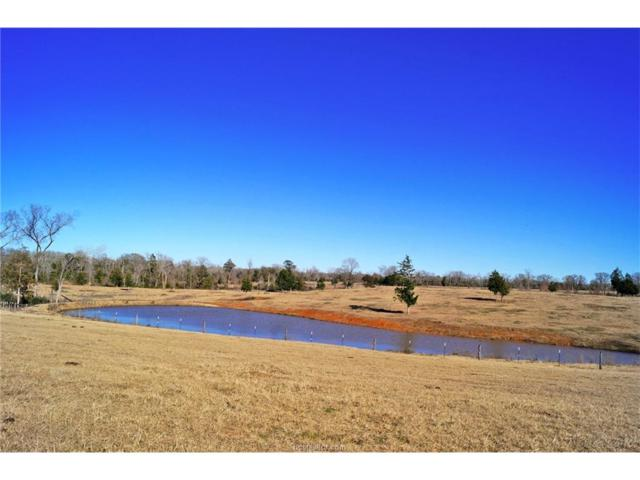 000 County Rd 352, North Zulch, TX 77872 (MLS #18002213) :: Amber Dawn Cox Realty Group