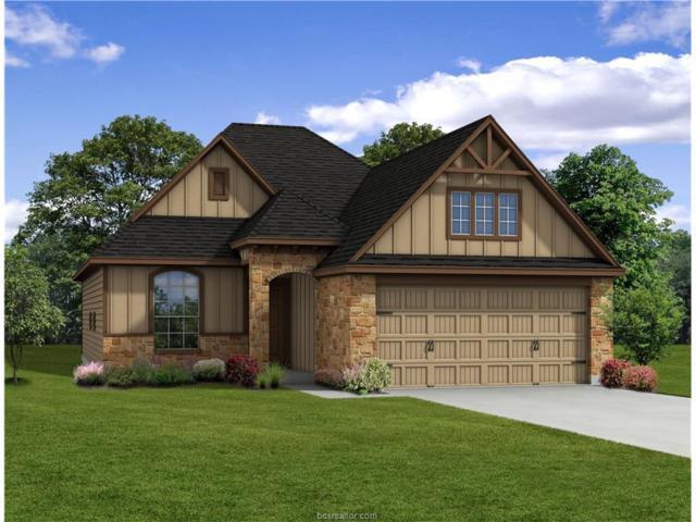 2005 Bleeker Cove, Bryan, TX 77807 (MLS #18002222) :: Cherry Ruffino Realtors