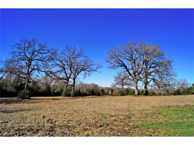 000000 County Rd 352, North Zulch, TX 77872 (MLS #18002253) :: Amber Dawn Cox Realty Group