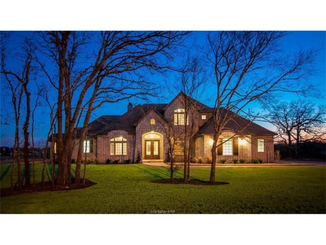 18054 Wigeon, College Station, TX 77845 (MLS #18002364) :: Cherry Ruffino Realtors