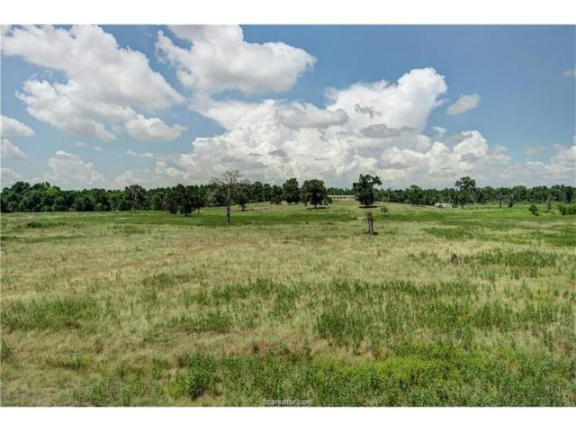 TBD Lou Bee Lane, Madisonville, TX 77864 (MLS #18002374) :: Amber Dawn Cox Realty Group