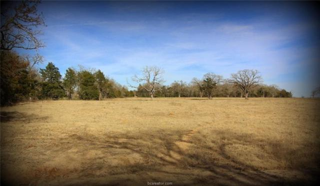 TBD Elmo Rd, Calvert, TX 77837 (MLS #18002872) :: Platinum Real Estate Group