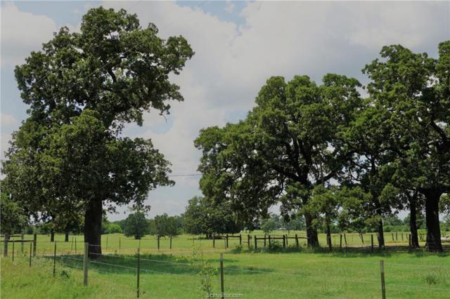 7955 Lone Star Road, North Zulch, TX 77872 (MLS #18003030) :: Amber Dawn Cox Realty Group
