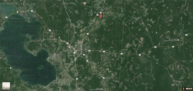 04 Roma Drive, Other, TX 77351 (MLS #18003197) :: Cherry Ruffino Realtors