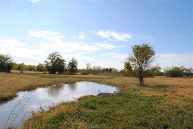 6420 County Road 110 County Road, Iola, TX 77861 (MLS #18003209) :: Amber Dawn Cox Realty Group