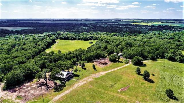 12236 Pleasant Hill Road - Cr 312 (+/- 177 Acres), Rockdale, TX 76567 (MLS #18004331) :: Platinum Real Estate Group