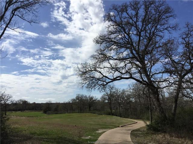TBD S Traditions Drive, Bryan, TX 77807 (MLS #18004440) :: Platinum Real Estate Group