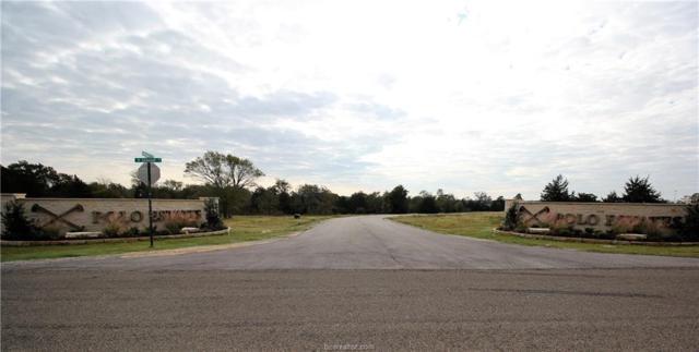 4236 Chukker Lane, College Station, TX 77845 (MLS #18005117) :: Platinum Real Estate Group
