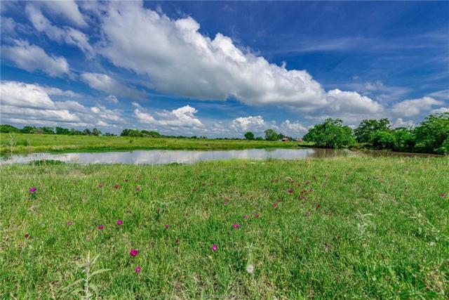 12.57+/- acres N Old Springfield Rd, North Zulch, TX 77872 (MLS #18007363) :: Amber Dawn Cox Realty Group