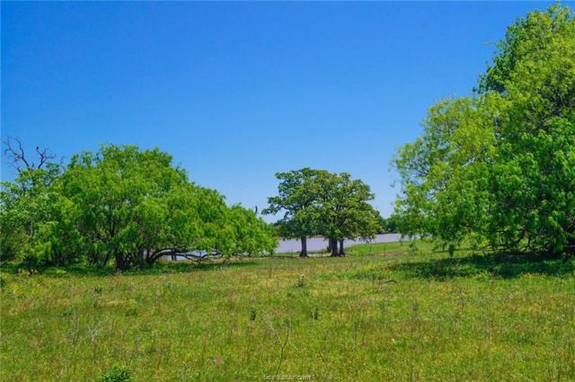 10.4 acres N Old Springfield Rd, North Zulch, TX 77872 (MLS #18007368) :: Amber Dawn Cox Realty Group