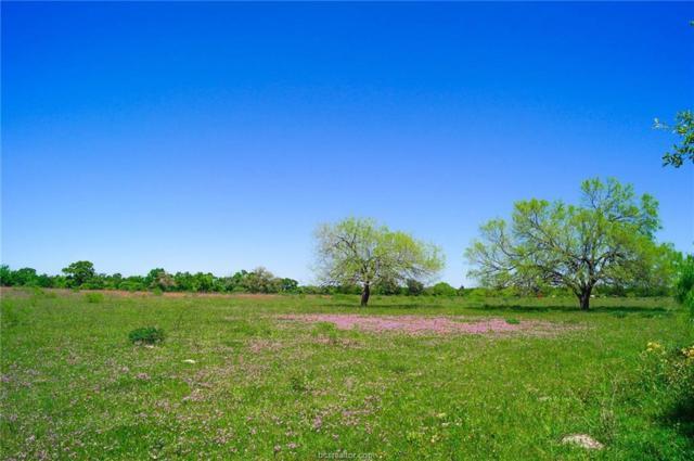 TBD N Old Springfield Rd, North Zulch, TX 77872 (MLS #18007370) :: Amber Dawn Cox Realty Group