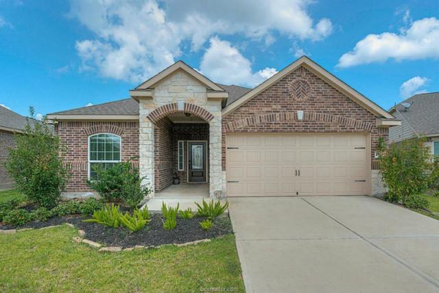 22602 Crate Falls Dr., Other, TX 77447 (MLS #18007629) :: Platinum Real Estate Group