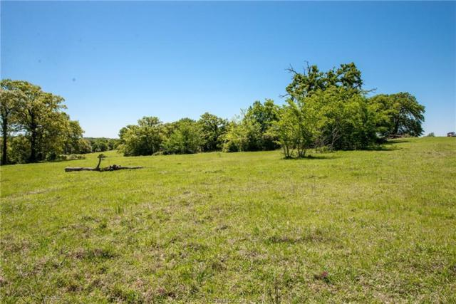 TBD Cr 305, Rockdale, TX 76567 (MLS #18008734) :: The Tradition Group