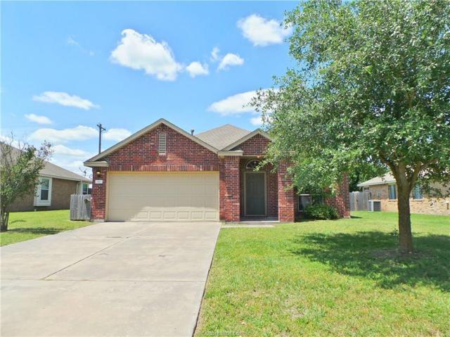 917 Whitewing Lane, College Station, TX 77845 (MLS #18009065) :: Treehouse Real Estate