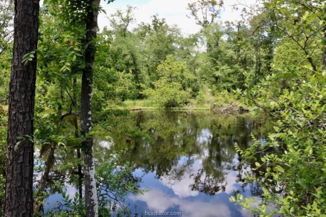 TBD County Road 208, Navasota, TX 77868 (MLS #18009508) :: Amber Dawn Cox Realty Group