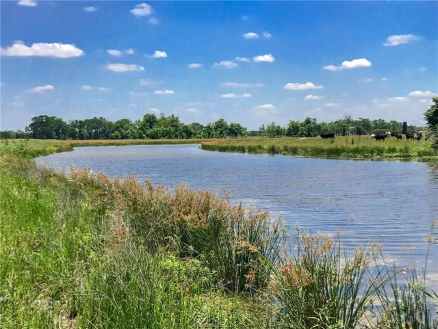 000 Starview Lane, North Zulch, TX 77872 (MLS #18009559) :: Amber Dawn Cox Realty Group