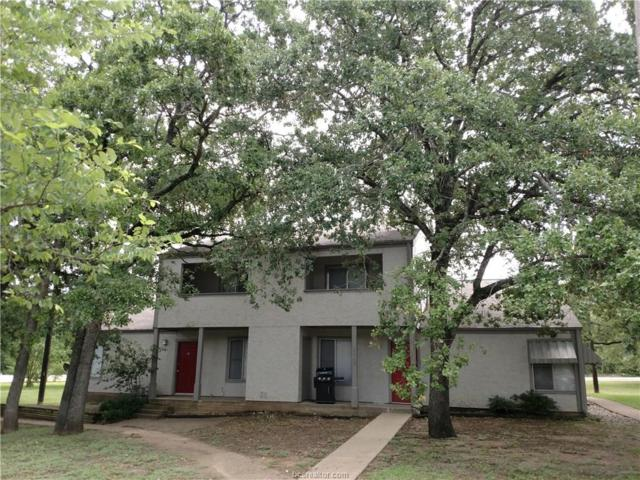 3203 Cougar Trail, Bryan, TX 77807 (MLS #18009808) :: Cherry Ruffino Realtors