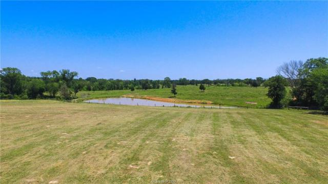 14.87 Acres County Rd 352, North Zulch, TX 77872 (MLS #18009812) :: Amber Dawn Cox Realty Group