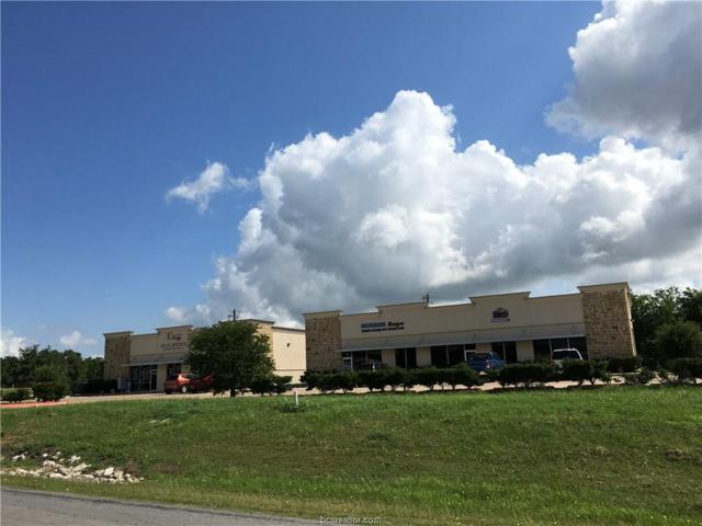 3010 E Villa Maria Road, Bryan, TX 77803 (MLS #18009852) :: Cherry Ruffino Realtors