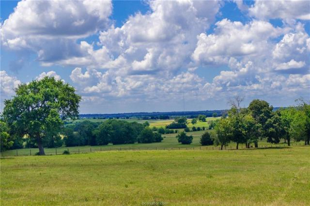 4581 County Road 222, Anderson, TX 77830 (MLS #18010058) :: Platinum Real Estate Group