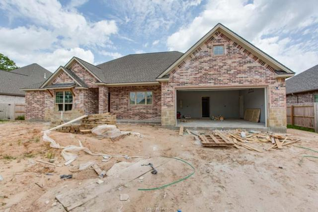4807 Crooked Branch Drive, College Station, TX 77845 (MLS #18011497) :: Treehouse Real Estate