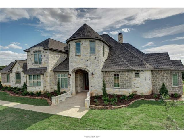 5454 Canvasback Cove, College Station, TX 77845 (MLS #18011571) :: Cherry Ruffino Team