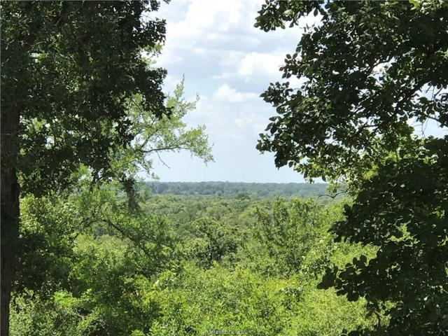 10882 Commonwealth Drive, Iola, TX 77861 (MLS #18011575) :: Treehouse Real Estate