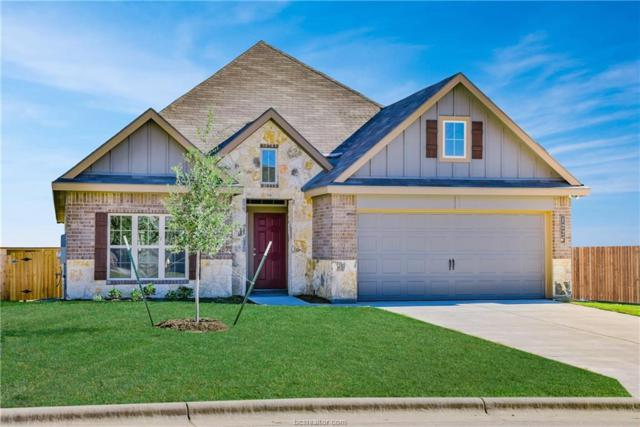 4107 Briles Court, College Station, TX 77845 (MLS #18011665) :: The Lester Group