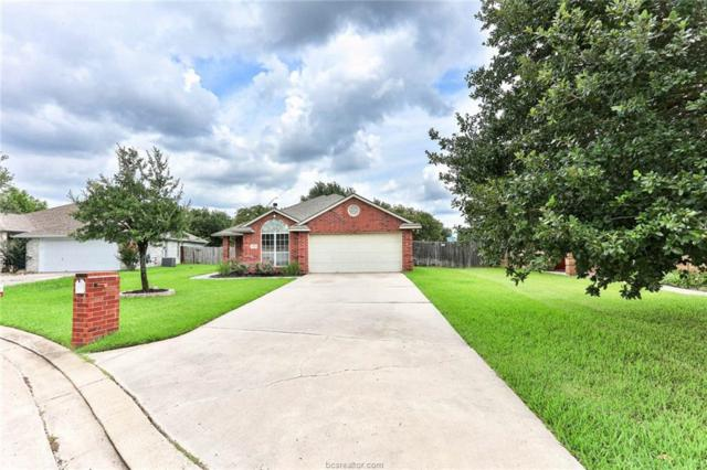 3613 Vienna Drive, College Station, TX 77845 (MLS #18011679) :: Treehouse Real Estate