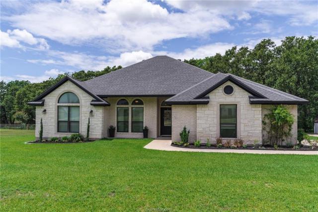 4179 Vintage Hills Drive, Bryan, TX 77808 (MLS #18011735) :: RE/MAX 20/20
