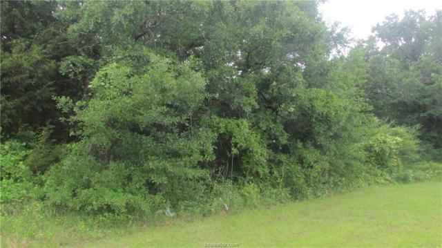 1015 W Villa Maria Road, Bryan, TX 77801 (MLS #18011799) :: Platinum Real Estate Group
