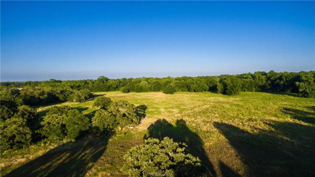 19351 Moonlit Hollow Loop, College Station, TX 77845 (MLS #18011811) :: Treehouse Real Estate