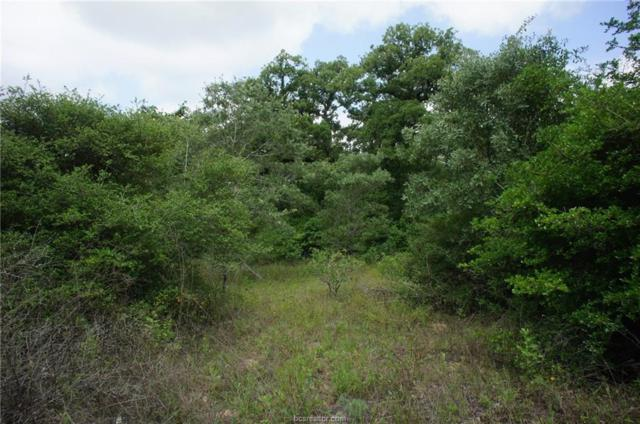 TBD Moonglow Lane, Caldwell, TX 77836 (MLS #18011831) :: RE/MAX 20/20
