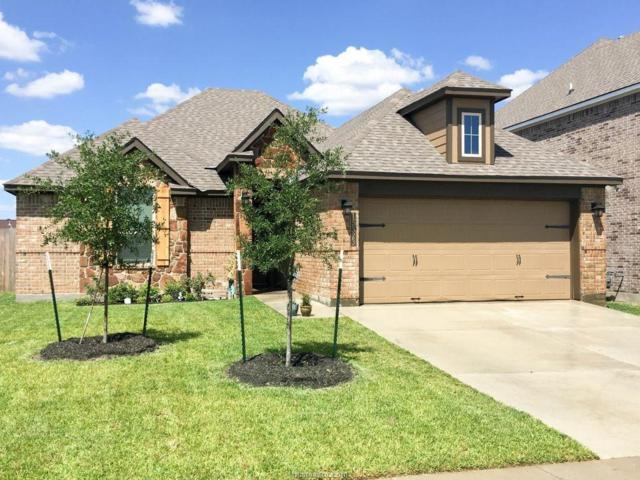 15323 Still Water Meadow Lane, College Station, TX 77845 (MLS #18012209) :: Cherry Ruffino Realtors