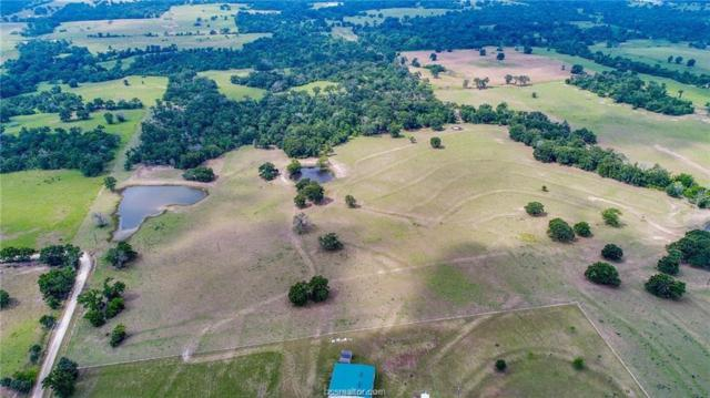 0000 Pleasant Grove Road, North Zulch, TX 77872 (MLS #18012325) :: Platinum Real Estate Group