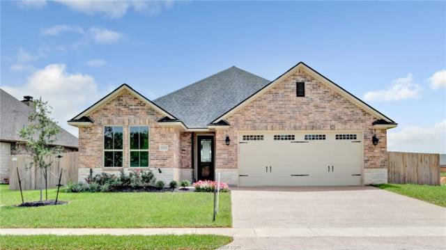 15656 Long Creek Lane, College Station, TX 77845 (MLS #18012499) :: Cherry Ruffino Realtors