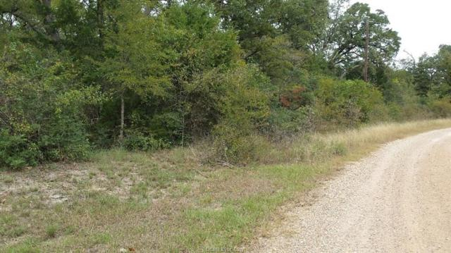 22 Woodview Pvt Loop, College Station, TX 77845 (MLS #18012553) :: Cherry Ruffino Realtors