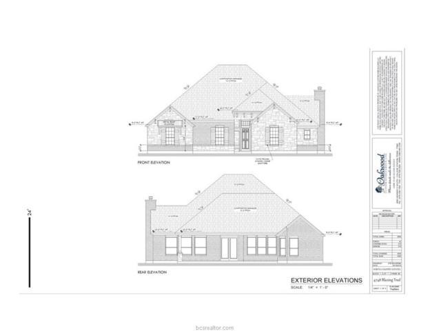 4748 Blazing Trail, Bryan, TX 77808 (MLS #18014030) :: Chapman Properties Group