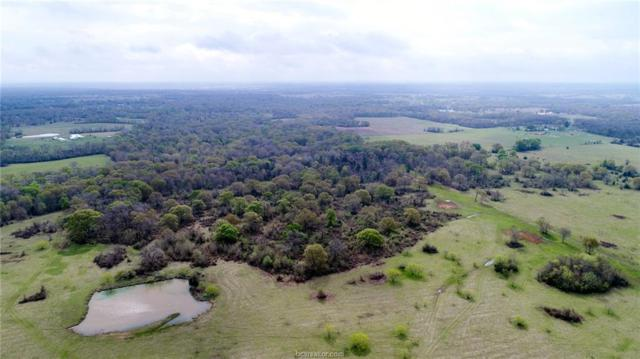 334 County Road 334, Caldwell, TX 77836 (MLS #18014115) :: NextHome Realty Solutions BCS